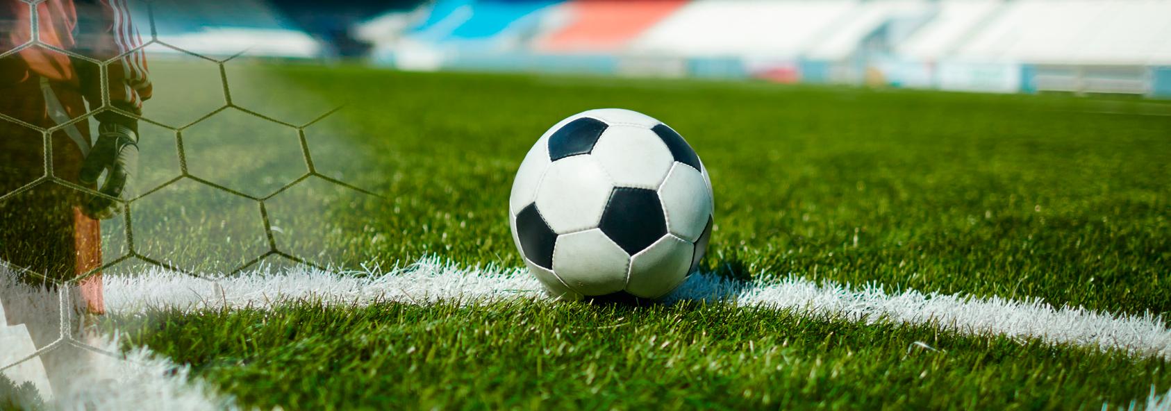 Zelaiak irudia - gipuzkoako futbol federazioa